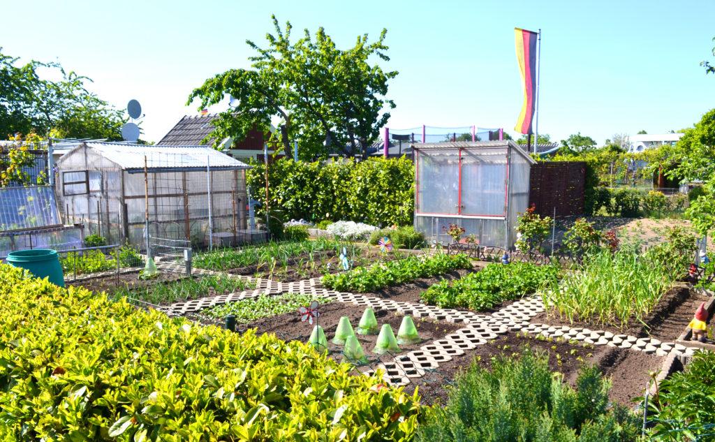 Kleingarten statt Heimkoller - Wir für Bocholt